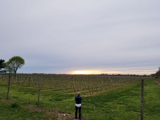 sunsetNorthfork